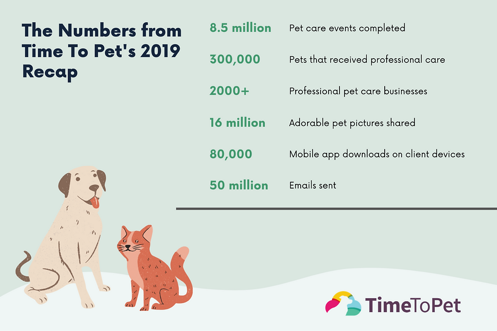 Time To Pet - The 2019 Recap Numbers - Software for Dog Walkers & Pet Sitters