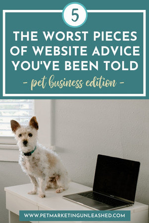 The 5 Worst Pieces of Website Advice You've Been Told - Pet Business Edition
