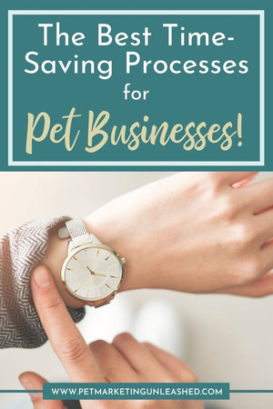 The Best Time-Saving Processes for Pet Businesses