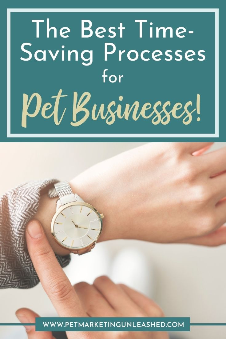 Pet Business marketing tips | Pet Marketing Unleashed | Time-Saving Processes for Pet Businesses