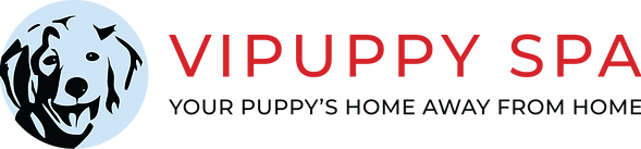 pet boarding NJ logo, branding, and web design