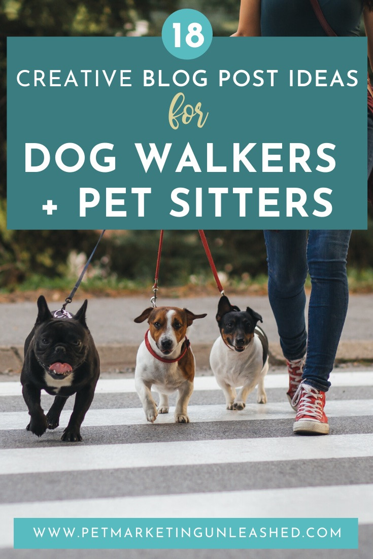 Blog Post Ideas for dog walkers