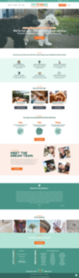 petprogo dog walker and pet sitter in LA web design branding logo creation pet industry