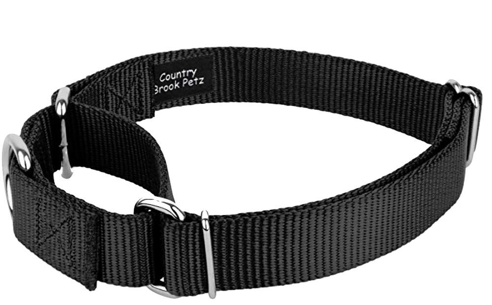 Best collar for my dog puppy who pulls pet waggin long beach