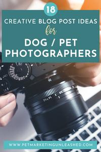 blog post ideas for pet photographers
