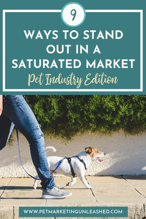 9 Ways to Stand Out in a Saturated Market (Pet Industry Edition)