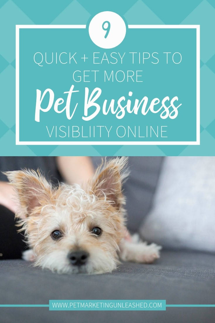 9 Quick + Easy Tips To Get More Pet Business Visibility Online | Pet Marketing Unleashed | Marketing for dog walkers, pet sitters, veterinarians, groomers, and dog trainers