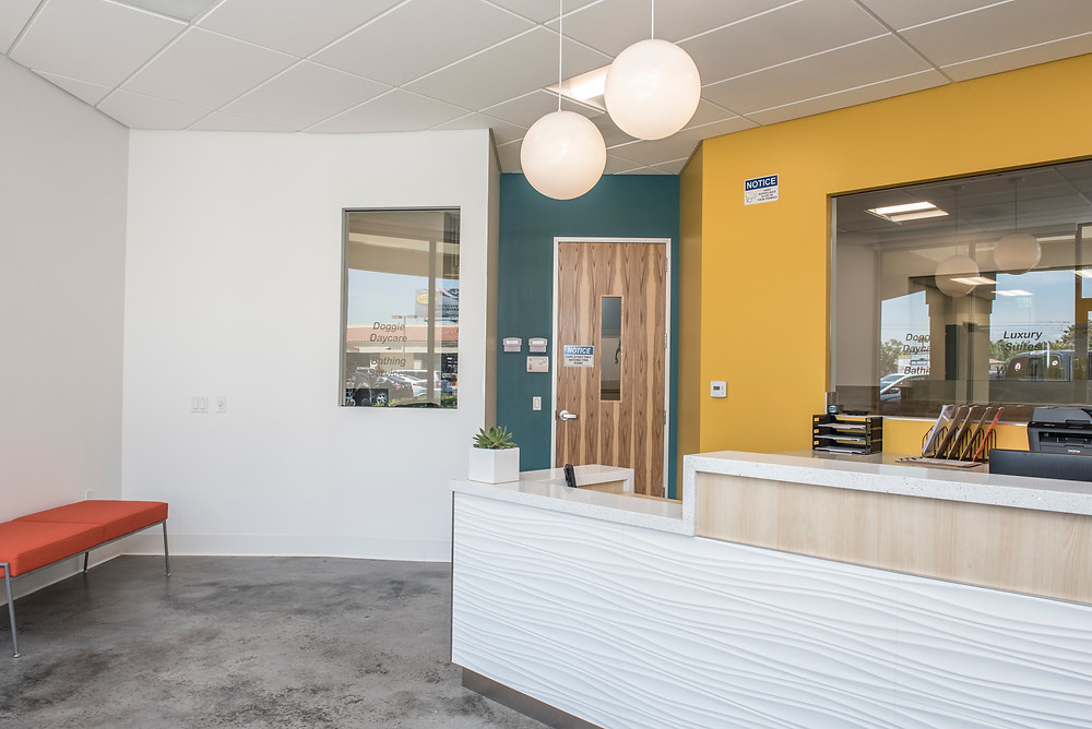 Furry Friends Resort in Santee lobby - pet boarding and dog daycare