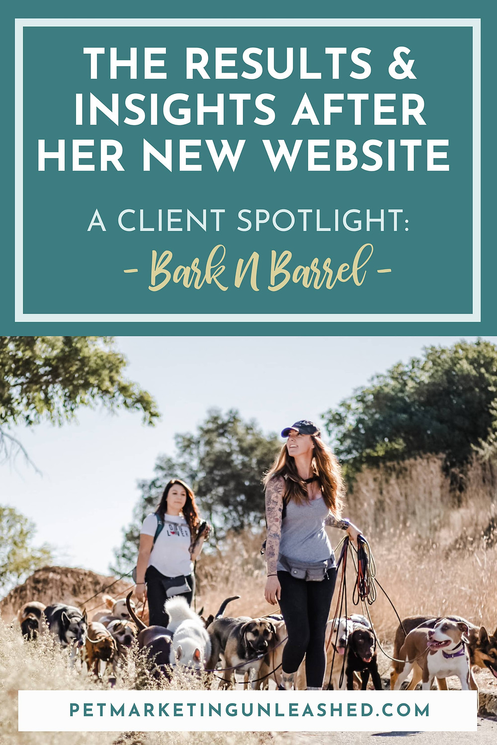 Client Spotlight with Bark N Barrel Dog Walking Dog Care Service Results and Insights After Her Custom Website Design with Pet Marketing Unleashed