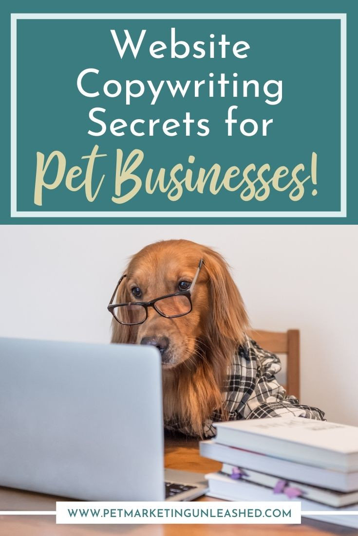 website copywriting for pet businesses like dog walkers and pet sitters veterinarians groomers and dog trainers | Pet Marketing Unleashed | Pet Industry Copywriting