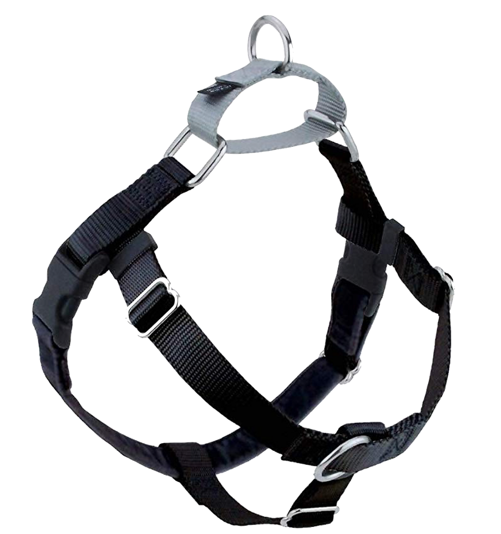 Best Harnesses To Use For My Dog Who Pulls | Long Beach | Pet Waggin' Pet Care