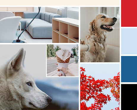 VIPuppy Spa Mood Board doggie daycare branding