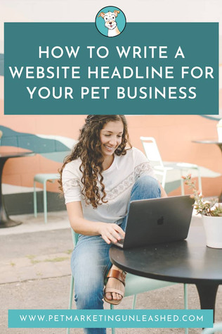 How to Write A Website Headline For Your Pet Business