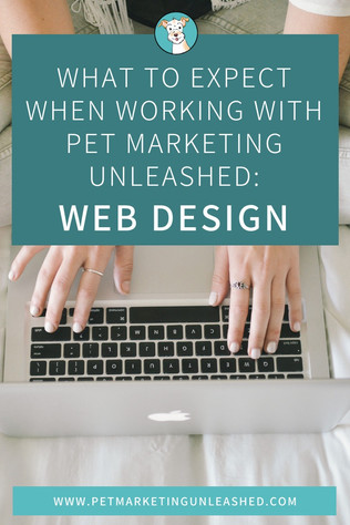 What To Expect When Working With Pet Marketing Unleashed: Web Designs