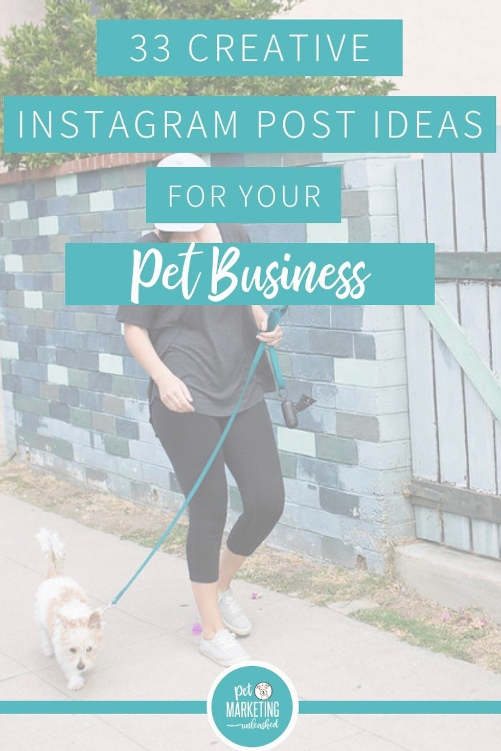 33 Creative Instagram Post Ideas for Your Pet Business | Dog walkers, pet sitters, pet photographers, groomers, veterinarians, and dog trainers | Pet Marketing Unleashed