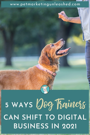 5 Ways Dog Trainers Can Shift to Digital Business in 2021