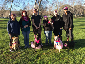 Paws FUR Pink Walk to Support Canine Cancer - Pet Waggin' Team