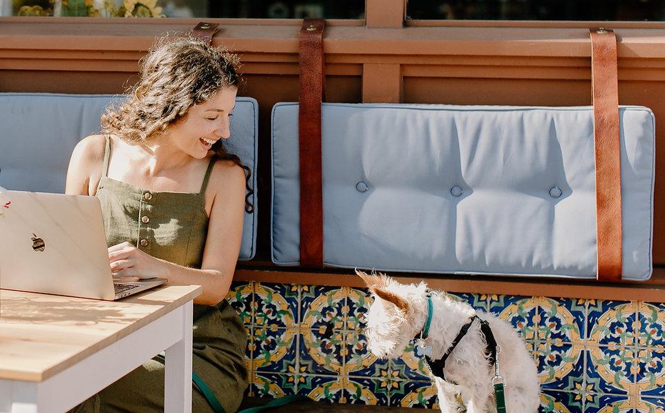 PMU Shop - pet sitter and dog walker and dog trainer website templates