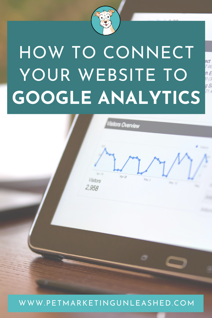 How to connect your website to Google Analytics | Pet Marketing Unleashed