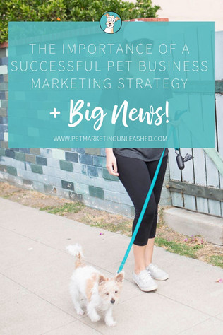 The Importance of a Successful Pet Business Marketing Strategy