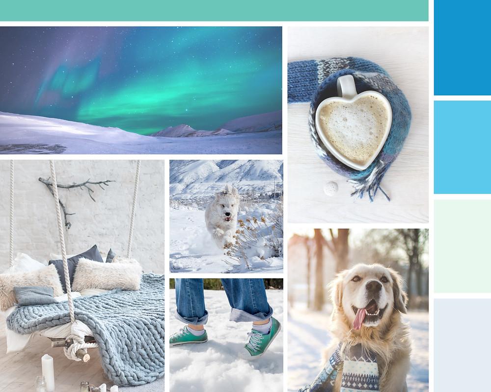 YKSitter Yellowknife Canada Pet Sitter Website Design Branding Mood Board | Pet Marketing Unleashed