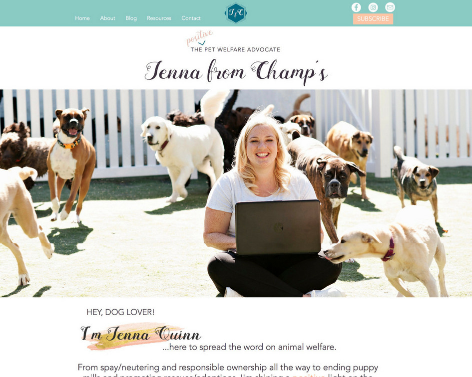 New Branding & Website Design For Jenna From Champ's Pet Advocacy Brand | Pet Marketing Unleashed