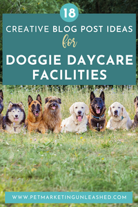 blog post ideas for dog daycares and pet boarding