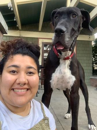 Sadies - dog walker and pet sitter in Long Beach