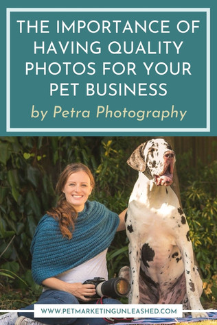 The Importance of Having Quality Photos for Your Pet Business with Petra Photography