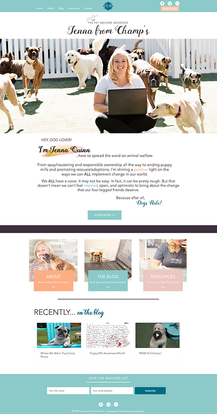 jenna from champ's pet welfare blog web design