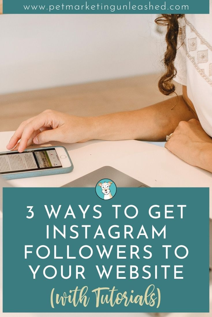 3 Ways To Get Instagram Followers To Your Website (with Tutorials) | Pet Marketing Unleashed
