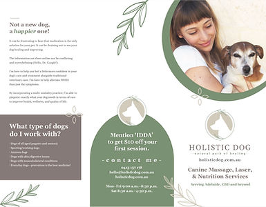 Holistic Dog Brochure Design for pet bus