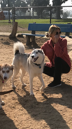 dog park services in Long Beach