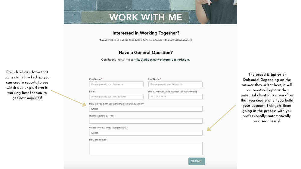 Lead Gen Form in Dubsado Features for pet photographers or pet massage therapists