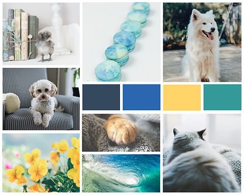 Pawsitive Pet Care Mood Board.png