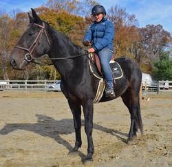 Big Boy Toz (under saddle 2).JPG