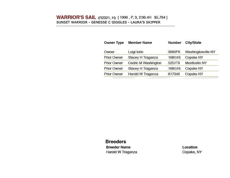 Warrior's Sail.jpg