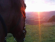 sunset ride_edited.jpg
