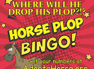 Horse plot bingo graphic V5.jpg