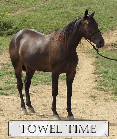 Towel Time