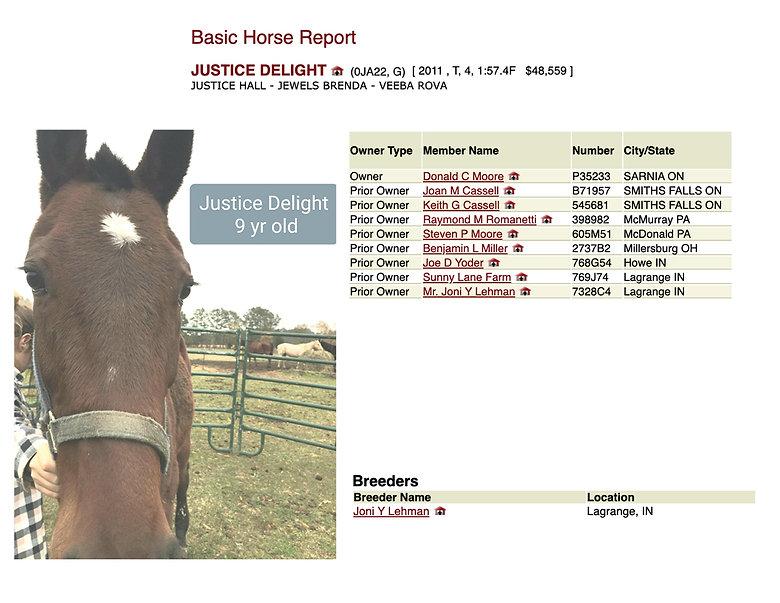 Justice Delight bio.jpg