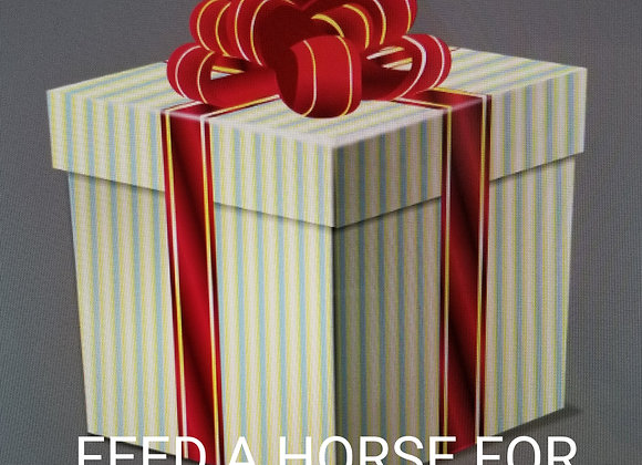 Help a Horse-Hay and Grain for a Day!