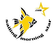 Morning Star Logo smaller box.jpg