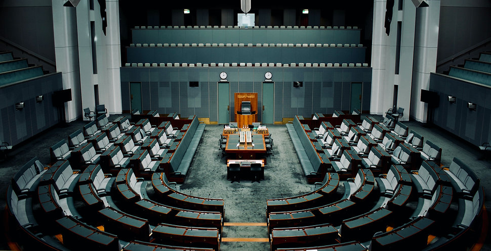 Parliament and the Government