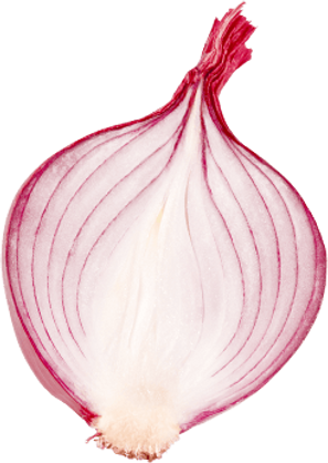 h1-onion.png