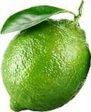 h1-lime-2.png