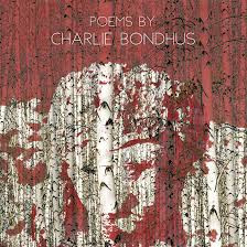A review of Divining Bones by Charlie Bondhus