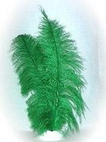 Spadoris veren 50 cm