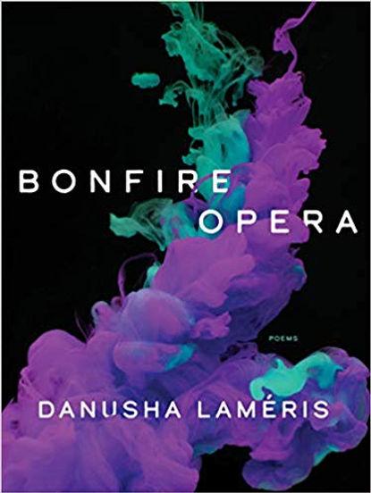 bonfire-book-cover.jpg