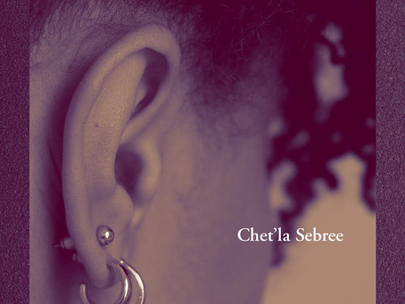 Silence, Violence, and the Art of Self-Implication: An Interview with Chet'la Sebree